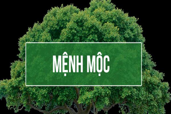 menh-moc